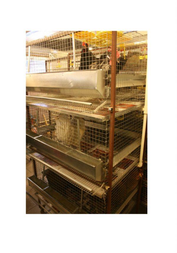 Фото 1 - Клетка для кур-несушек 3/15 «Золушка».