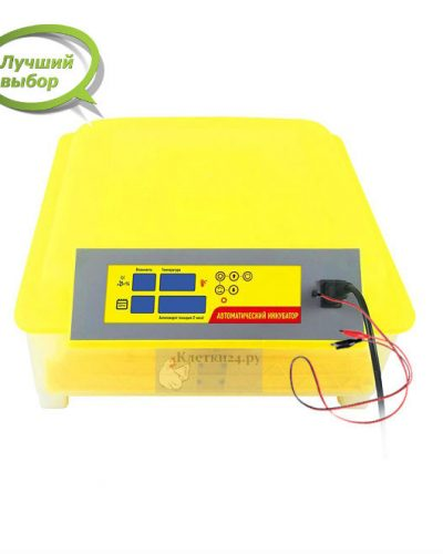 Инкубатор на 48 яиц с автономным питанием, контролем температуры, влажности и автоматическим переворотом